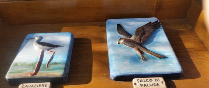 Photo des panneaux figurant dans la Réserve naturelle d'Orbetello. Ci-dessous, le cavaliere d'Italia et le Falco di Palude